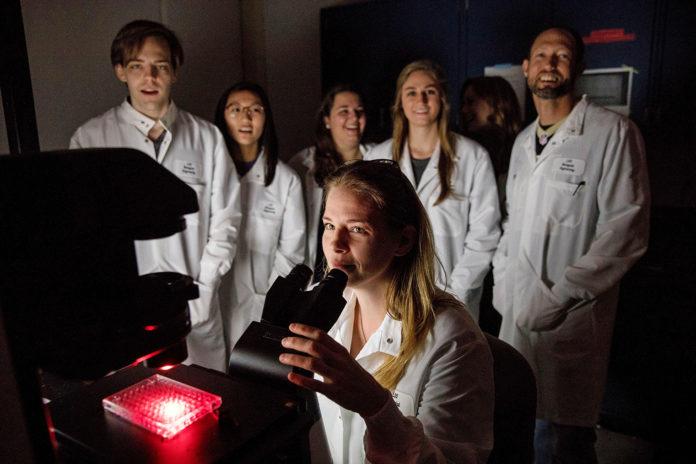 LSU breast cancer research