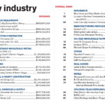 Top 100 by industry