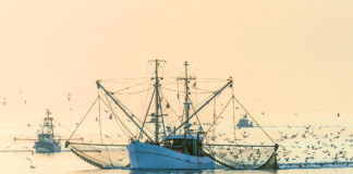 seafood industry Covid-19